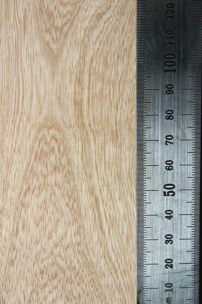 Jacaranda-mimosifolia-madera
